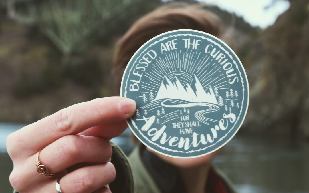 Blessed are the Curious – Vinyl Sticker