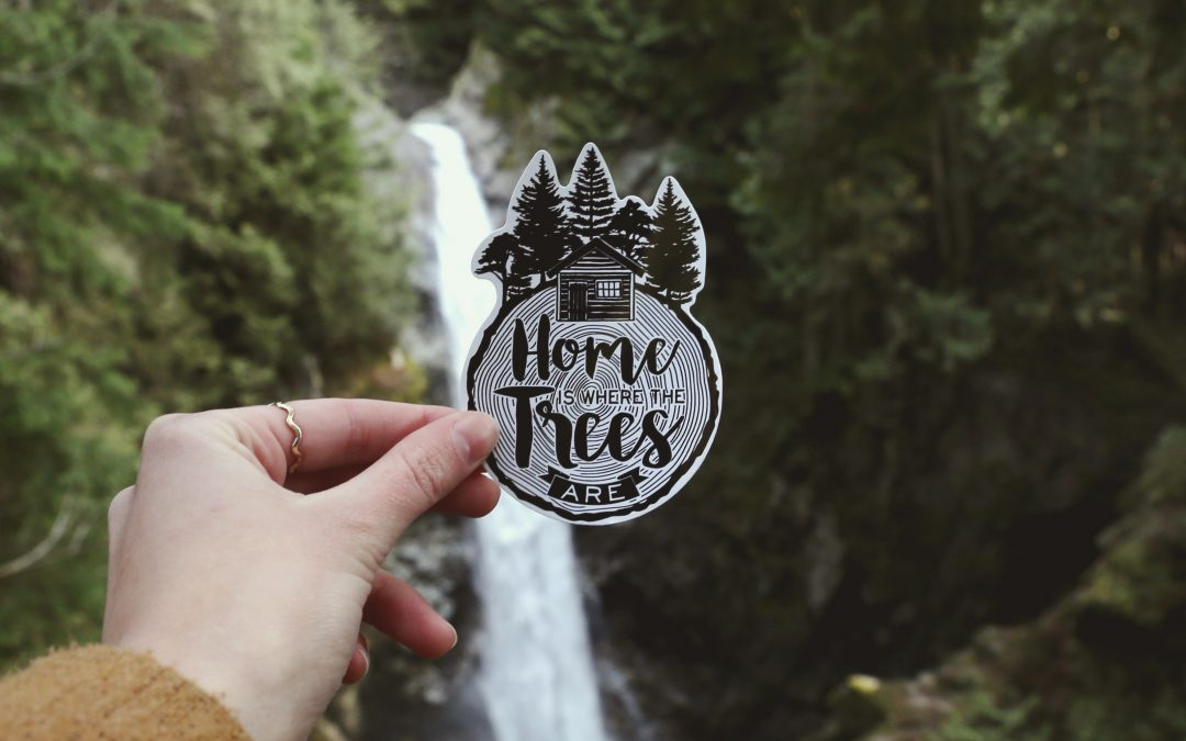 Home is Where the Trees Are – Vinyl Sticker